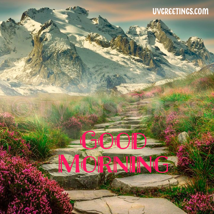 Good Morning image with mountain and Unique Pink shade flowers