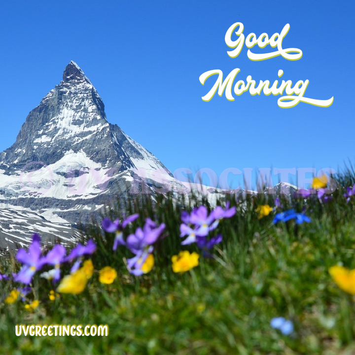 White Good Morning Lettering with shades of purple and yellow from the flowers and the cliff