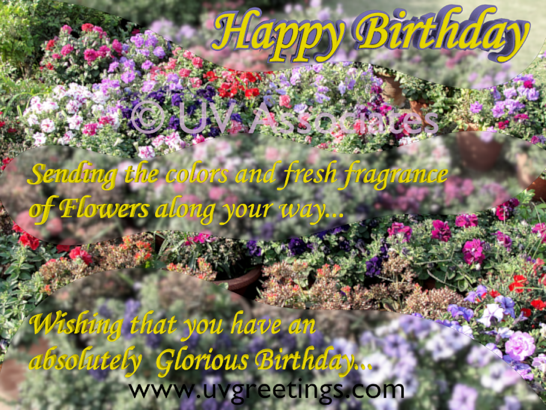 Happy Birthday - Fresh Fragrance of Multicolor Flowers