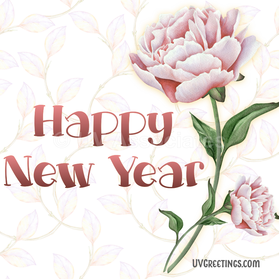A couple of gorgeous watercolor pink blossoms - Happy New Year