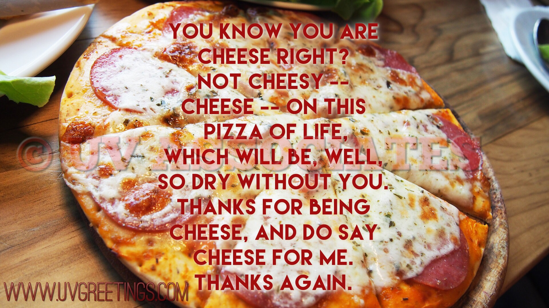 Thank you Friend eCard - Cheese on Pizza of Life