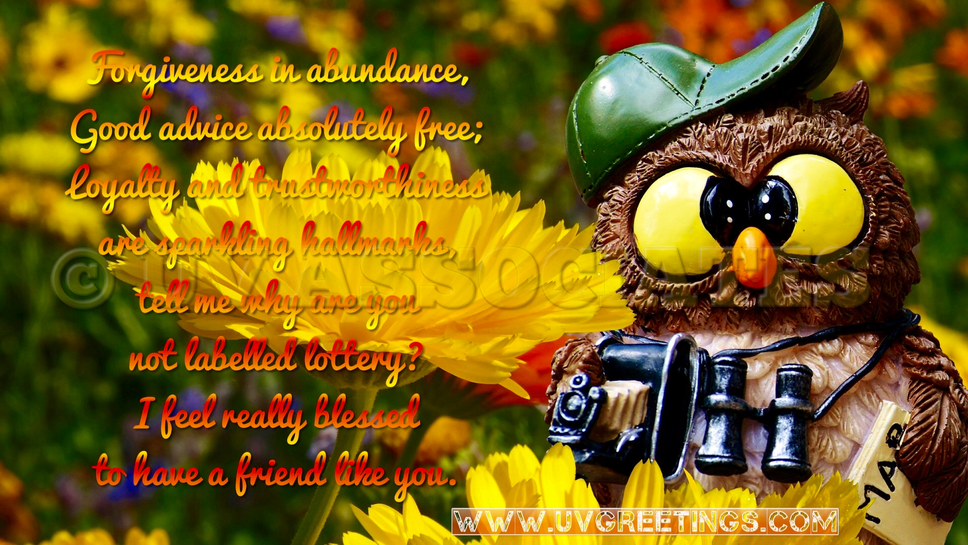 Thank You Friend - eCard bright yellow flowers, Owl