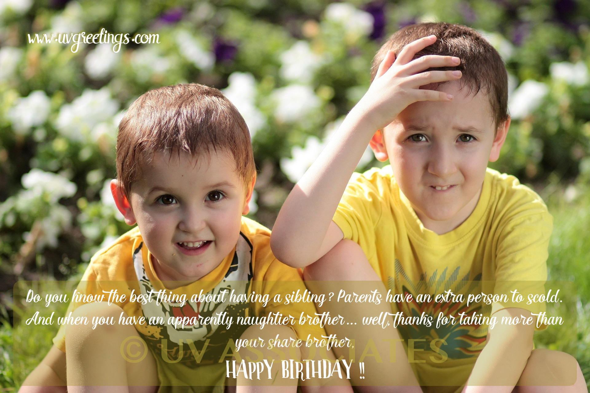 Funny eCard to tease a brother