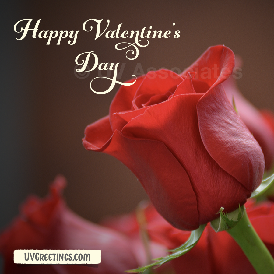 Enchanting Script - Happy Valentine's Day with