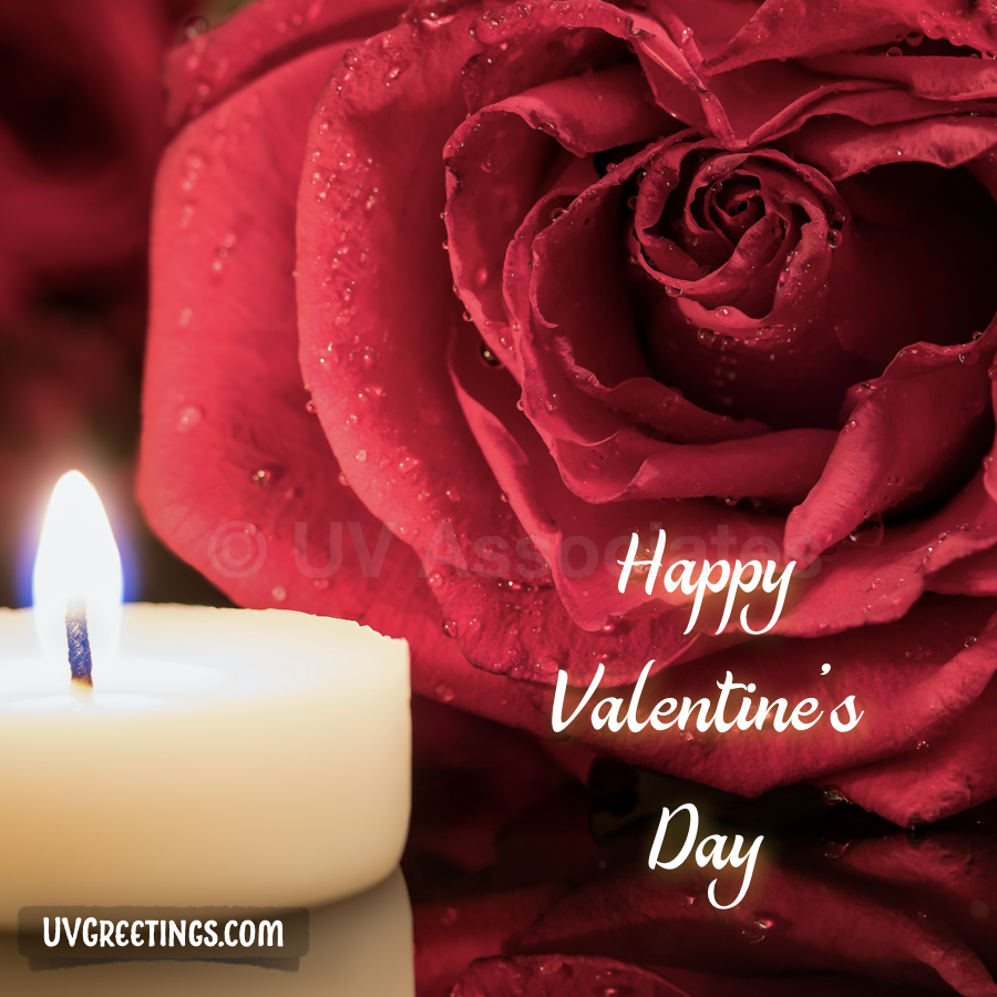 Candle and Rose with beautiful Drops  - Valentine's Day Image
