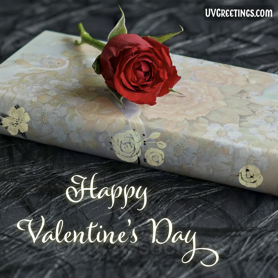 A Red Rose is lying on a beautiful Book in this Valentine's Day eCard.