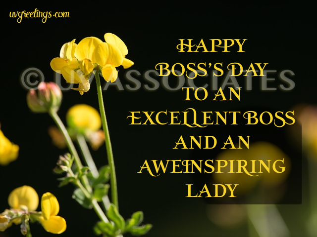 Yellow Flowers for an Excellent Boss and Awe-inspiring Lady