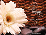 Beautiful Happy New Year Script with Flourishes