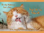 National Cat Day - Just let us Relax!